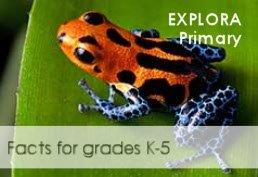 Explora Primary Facts for grades K-5